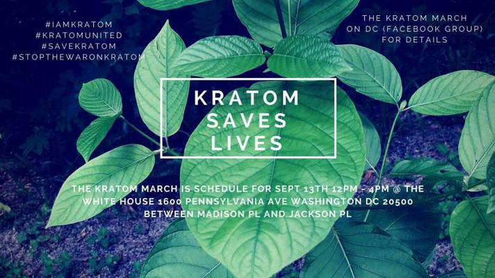 Which Are The 5 Principal Advantages Of Kratom Powder